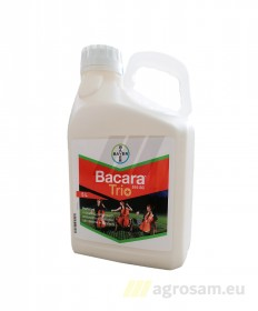 BACARA TRIO 516 SC 5L